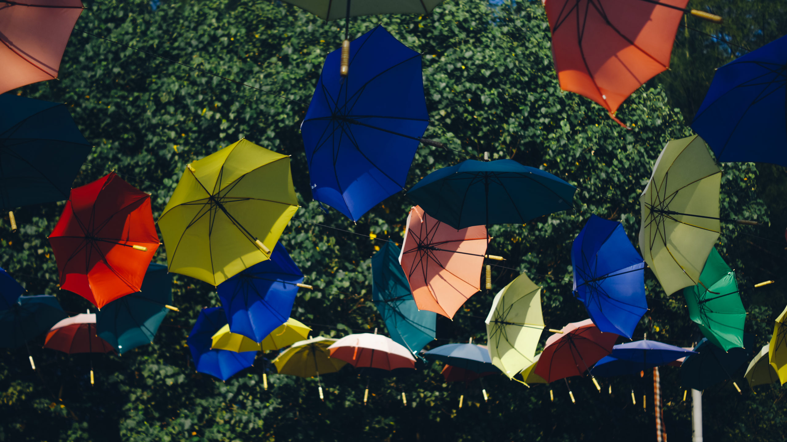 Parapluies qui s'envolent